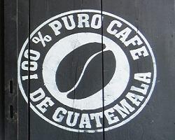 Kávékalmár - Guatemala Antigua San Miguel